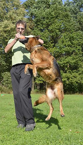 Addestrare il cane a genova